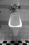 man sued Arby's for injuries at urinal